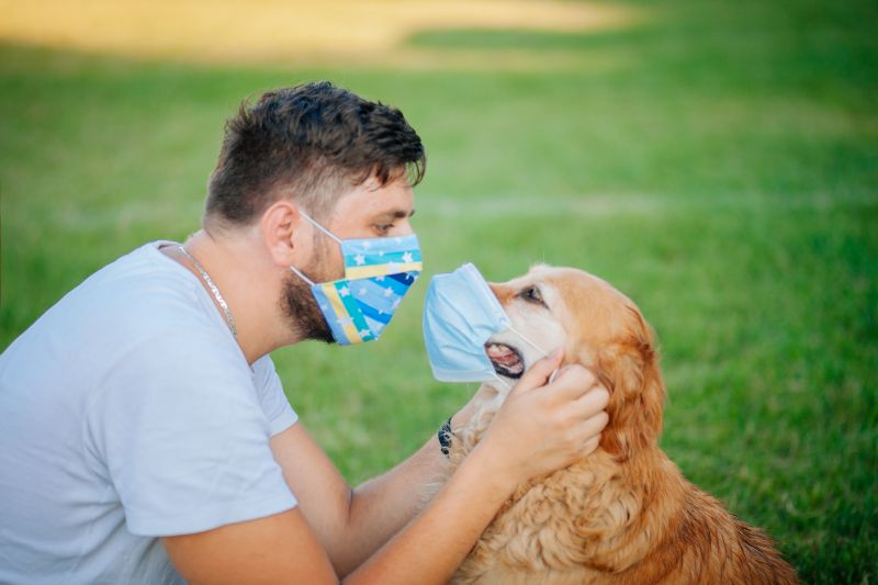 A man in a surgical mask puts a surgical mask on his dog.